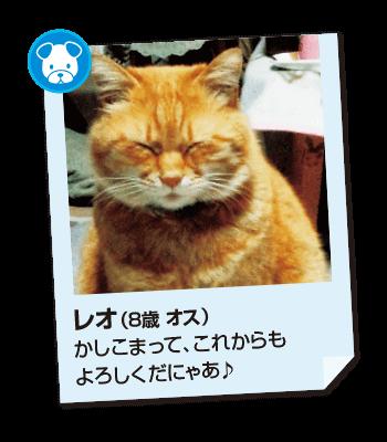 201611_pet05
