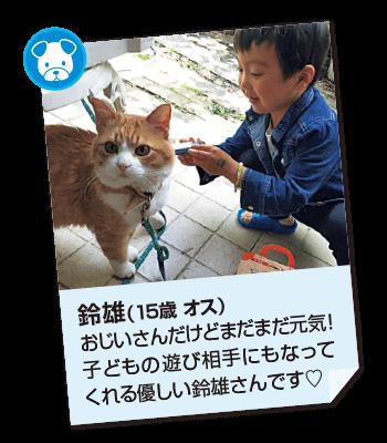 201708_pet02
